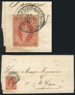 ARGENTINA: GJ.19, Fantastic Example Of 1st Printing Perforated, Very Clear Impressi - Argentina
