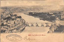 HUY - La Vallée De La Meuse. - Hoei