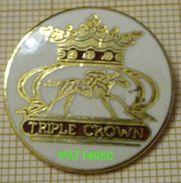 TRIPLE CROWN  COURSES HIPPIQUES BRITANIQUES - Games