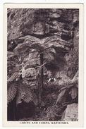 AUSTRALIA KATOOMBA NSW Cliffs And Ferns C1920s-30s B. Phillips Vintage Postcard M8943 - Australia