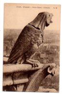 Paris - Notre Dame - Chimere-1730-voir état - France