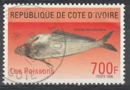 Ivory Coast, Catfish, Schilbe Mandibularis, 1996, VFU - Ivory Coast (1960-...)