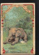 Chocolat Poulain, Legendes Sur Les Animaux 2ème Série, N°20 L'elephant Bonne D'enfant - Poulain