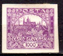Cecoslovacchia-023 - 1918-20 - Y&T N. 26 (+) LH - Senza Difetti Occulti. - Cecoslovacchia