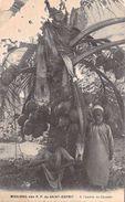 Afrique  Tanzanie ? A L'ombre Du Cocotier   MISSIONS DES PERES  Du Saint-Esprit (RELIGION MISSION) PRIX FIXE - Tanzania