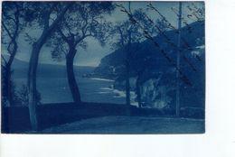 U1195 Cartolina Piccola: Località Non Identificata - 7169 Serie 29 (gallo Sul Retro)_ NN CIRC. - Cartoline