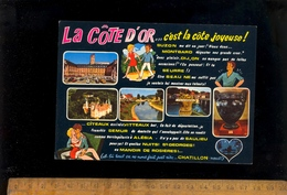 Département De La COTE D'OR 21 C'est La Côte Joyeuse Suzon Montbard Dijon Seurre Beaune Citeaux Semur Alésia Saulieu - France