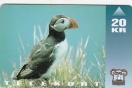 Faroe Islands, OD-008, Oystercatcher, Bird, Only 15.000, 2 Scans. - Faroe Islands