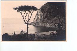 U1209 Cartolina Piccola Da Identificare: Località Non Indentificata - Cartoline