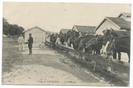 CPA CAMP DE CHALONS, LES CHEVAUX A L'ABREUVOIR, MARNE 51 - Camp De Châlons - Mourmelon