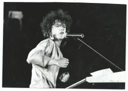 PHOTO CONCERT D'INDOCHINE AU ZENITH, LES ENFANTS DU ROCK SUR A2, DIFFUSE EN 1987 - Célébrités