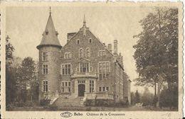 Be-1 -Beho - Château De La Concession.... Appellé Aussi De Bovigny.colorisé Beige -1 Scan. - Verso Sur Demande - Gouvy