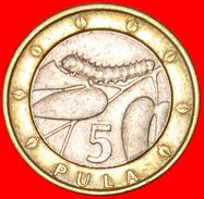 √ GREAT BRITAIN: BOTSWANA ★ 5 PULA 2007! LOW START ★ NO RESERVE! - Botswana