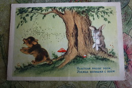 Bear And Bees  - OLD Soviet PC 1954 -  Mushroom - Champignon - Bee - Hongos
