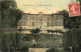 GAILLAC - Le Château Das Le Parc. - Gaillac