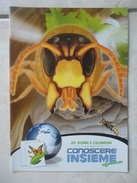 Conoscere Insieme - Opuscoli Ricerche Natura - Api Bombi E Calabroni, Alberi Fortezze Viventi - IL GIORNALINO SAN PAOLO - Books, Magazines, Comics