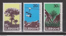 Suriname 492-494 MNH ; 25 Jaar Landsbosbeheer 1972 NOW SPECIAL SURINAME SALE - Surinam ... - 1975