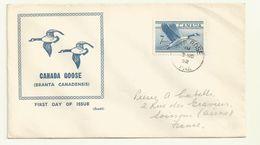 THEME OISEAUX OIES DU CANADA SUR LETTRE OBLITREE 03/11/1952 - Oies
