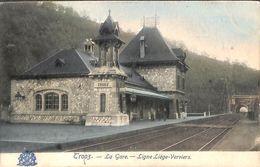 Trooz - La Gare - Ligne Liège-Verviers (animée, Colorisée, Grand Bazar) - Trooz