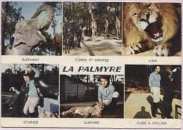 CPM - LA PALMYRE - PARC ZOOLOGIQUE DE MR CAILLE (Multivues) - Edition La Cigogne - France
