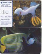 ROMANIA - Fish, Exp.date 01/08/07, Dummy Telecard(no Chip, No CN) - Romania