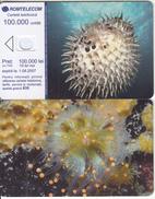 ROMANIA - Underwater, Exp.date 01/08/07, Dummy Telecard(no Chip, No CN) - Romania