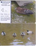 ROMANIA - Bird, Exp.date 01/03/09, Dummy Telecard(no Chip, No CN) - Romania