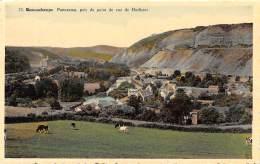 REMOUCHAMPS - Panorama, Pris Du Point De Vue De Hodister - Aywaille
