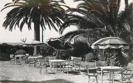 """CPSM FRANCE 06 """"Menton, Hotel Cecil"""" - Menton"""