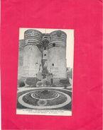 ANGERS - 49 - Les Deux Grandes Tours Du Chateau Et La Porte Des Champs - NANT3 - - Angers