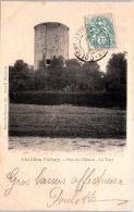 45 CHATILLON COLIGNY - Parc Du Château, La Tour. - Chatillon Coligny