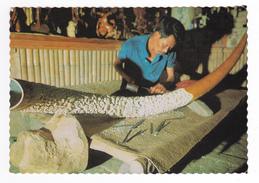 Indonésie Indonesia Bali Métier Sculpteur D'Ivoire Defense Eléphant De 2 Mètres De Long - Indonésie