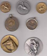 Paarden: Paardensport 7 Medailles - Equitation