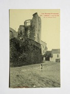 C.P.A. 64 LESCAR : Les Ruines De La Vieille Tour, Chien - Lescar