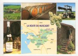 CP 10*15-BT341-LA ROUTE DU MUSCADET MULTIVUES - France