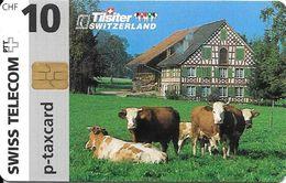 Swiss Telecom: 02/97 Tilsiter Käse - Suiza