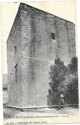 Ath NA27: Ruines De L'ancien Château De Burbant. La Tour - Ath