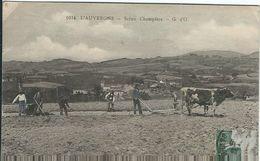 Puy De Dome : Type D'Auvergne, Scene Champetre - Auvergne Types D'Auvergne