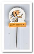 Sint Bernard - Pins