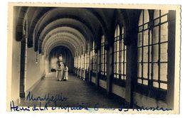 81  ABBAYE D EN CALCAT CLOITRE DE LA VIERGE   -  CPSM 1940 / 50 - Dourgne