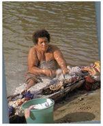 (PF 515) Fiji - Washing Day (in River) - Fidji