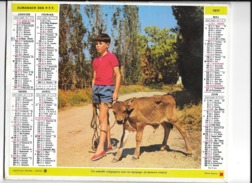 Calendrier 1977, Almanach Des PTT,postes, Un Aimable Compagnon Vaut Un équiupage, Poule ,Departement 26  Double Face - Calendriers