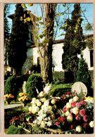 X640526 Poême Pierre D' ARCANGUES Cimetière Tombes Basques Attenant Eglise Pays BASQUE Euskadi - RAMEAUX - France