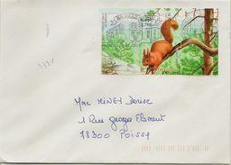 Timbre Seul Sur Lettre Nature De France L'écureuil N°3381 (oblitération Du 23/07/2002) - Marcophilie (Lettres)