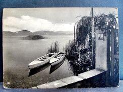 (FG.A72) TORRE DEL LAGO PUCCINI - LAGO DI MASSACIUCCOLI (VIAREGGIO, LUCCA) VIAGGIATA 1965 - Viareggio