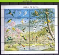 Neh006c FAUNA VOGELS OWL KINGFISHER WOODPECKER HUMMINGBIRD HAWK DOVE DUCK BIRDS VÖGEL AVES OISEAUX NEVIS 1991 PF/MNH - Konvolute & Serien