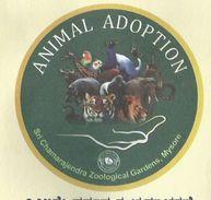 India Special Cover, Animal Adoption, Giraffe, Elephant, Lion, Parrot, Tiger, Zoological Gardens, Mysuru Zoo,2017 - Giraffes