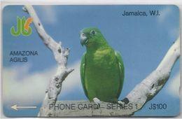 JAMAICA - AMAZONA AGILIS - PARROT - 13JAMD - Jamaica