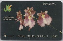 JAMAICA - ONCIDIUM PULCHELLUM - ORCHID - 8JAMB - Jamaica