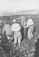 VERDUN Ramassage Des Cadavres  28   (scan Recto-verso)MA2174Ter - Verdun